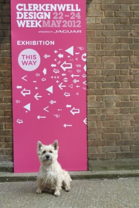 Stanley (the inspiration behind the Bark name) gives Clerkenwell Design Week his seal of approval